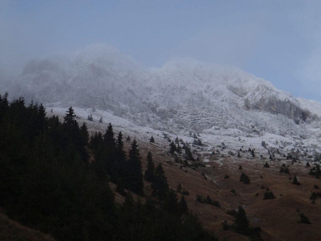 Coltii Grindului in straie de iarna